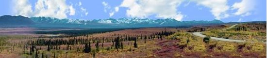 Picture of Alaskan denali national park right