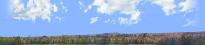 Picture of Autumn treeline in wisconsin left