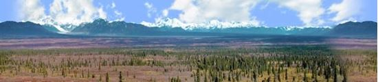 Picture of Alaskan denali national park repeatable