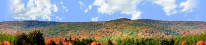 Picture of Autumn landscape in allegheny state park left repeatable